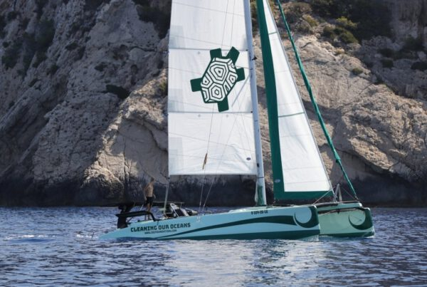 Catamaran iBi