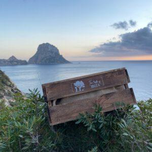 The Taste of Ibiza
